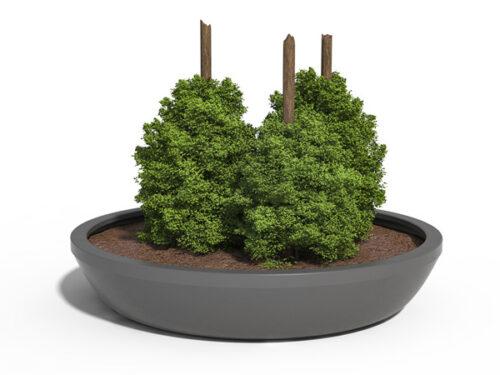 Dahlia plantekumme - Tunetanken